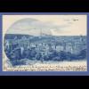 AK Weida Gesamtansicht , gelaufen 1900