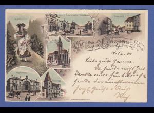 AK Gruss aus Hagenau im Elsass verschiedene Ansichten gelaufen 1901