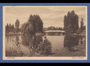 AK Berlin Spandau Partie im Südpark gelaufen 1932