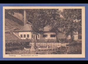 Alte AK 84453 Ecksberg Maschinenhalle und Teich, unbeschrieben