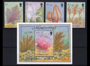 Montserrat 1995 Mi.-Nr. 910-914 Satz, Block 68 postfrisch ** / MNH Seepflanzen
