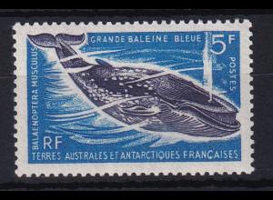 Französische Antarktis 1966 Mi.-Nr. 36 postfrisch ** / MNH Wal
