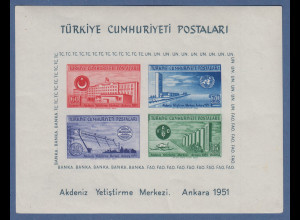 Türkei 1952 UNO-Tagung Blockausgabe Mi.-Nr. Block 4 **