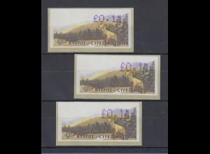 Zypern Amiel-ATM 1999, Mi-Nr. 2, Auflage B Set 3 Atm Wert 0,11 untersch. hoch