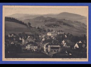 AK Kurort Nieder-Lindenwiese Blick auf Hochschar und Kepernik gelaufen 1924