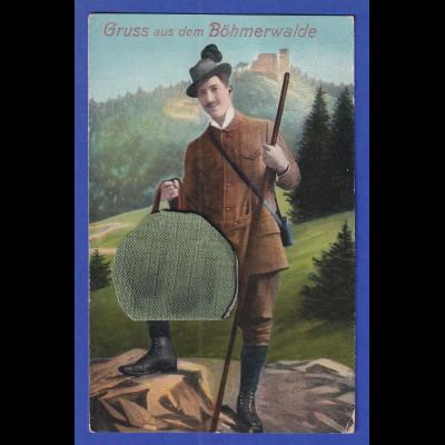 AK Österreich Gruss aus dem Böhmerwalde gelaufen 1913, nachtaxiert